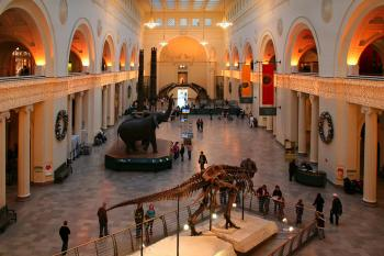 Chicago Bus Tours - Chicago Museums Tour